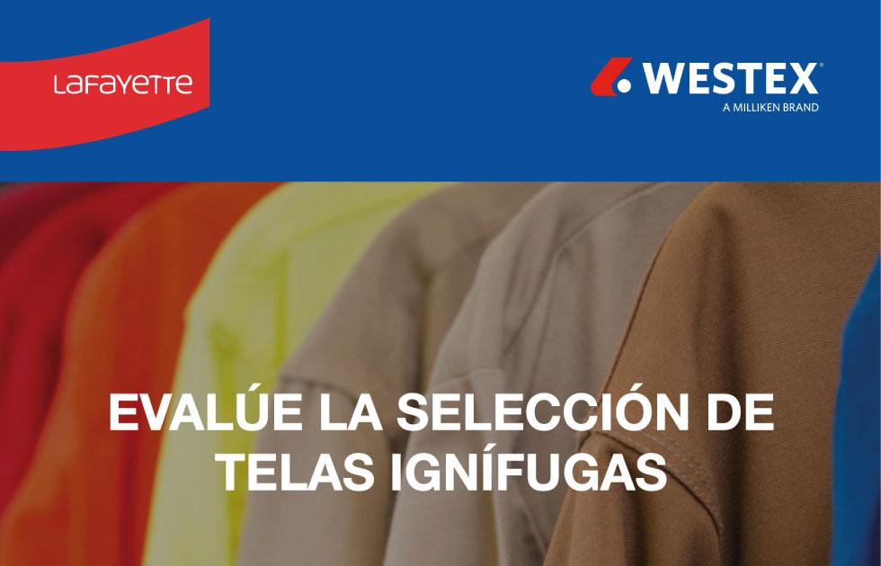CONTENIDO WESTEX